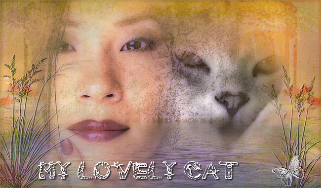 Mobile Game Review: My Lovely Cat